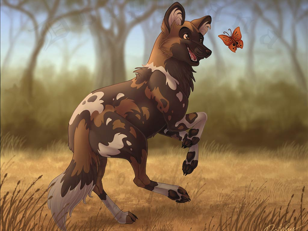 African wild dog wallpaper and background animals town for African wild dog coloring pages